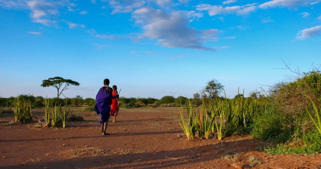 two Masai in the savannah in Tanzania at sunset
